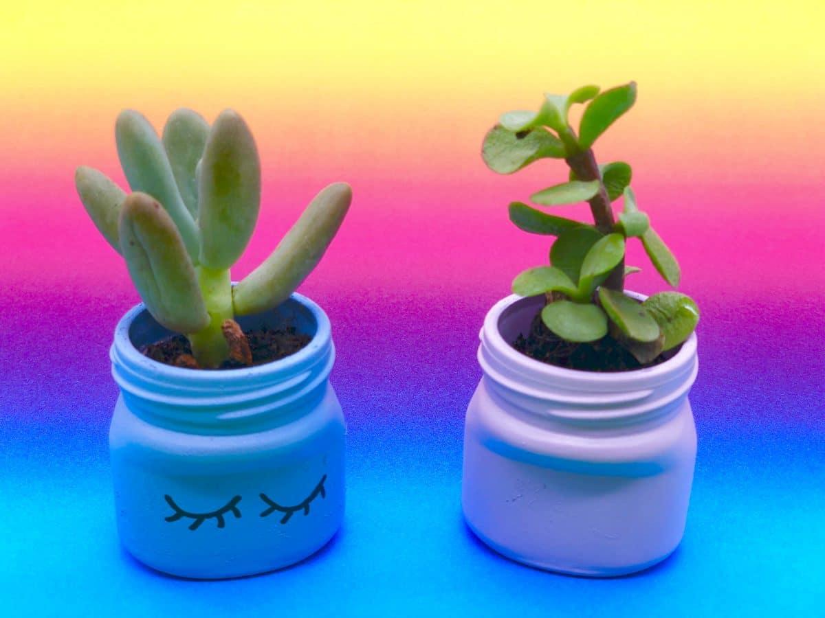 Blumentöpfe selber machen aus Einweg Gläsern - einfache Upcycling Ideen
